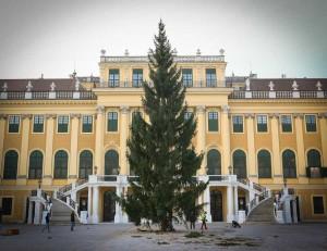 Adventmarkt Schönbrunn