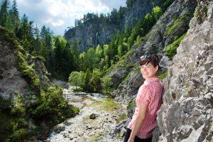 Bergsommer Niederösterreich