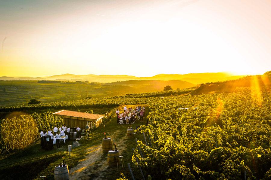 Weinherbst Niederösterreich Jubiläum Weinherbst Kamptal