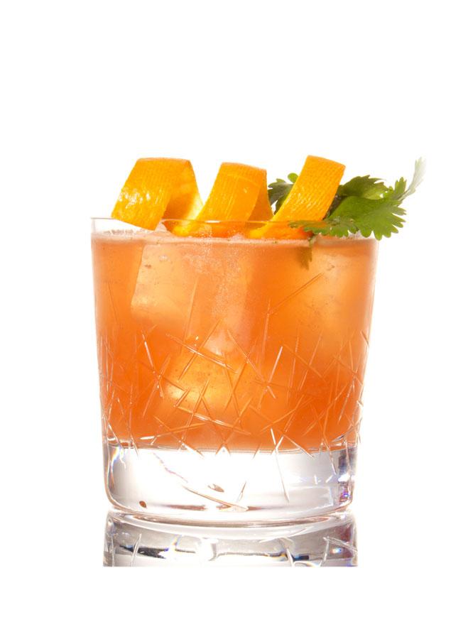 Rezepte für Garden Drinks Bon Carrot