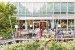 Hotel Daniel Wien: Grillvergnügen auf der Terrasse