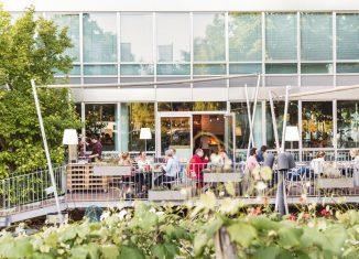 Sommerliches Grillvergnügen in Wien Hotel Daniel