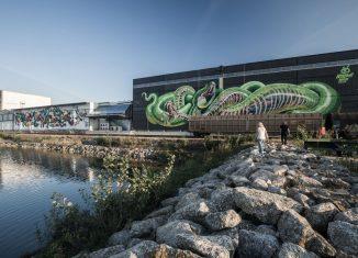 Größte zusammenhängende Graffiti-Galerie Hafen Linz