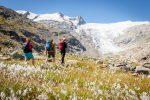Nationalparks: Sommerliche Fauna und Flora entdecken