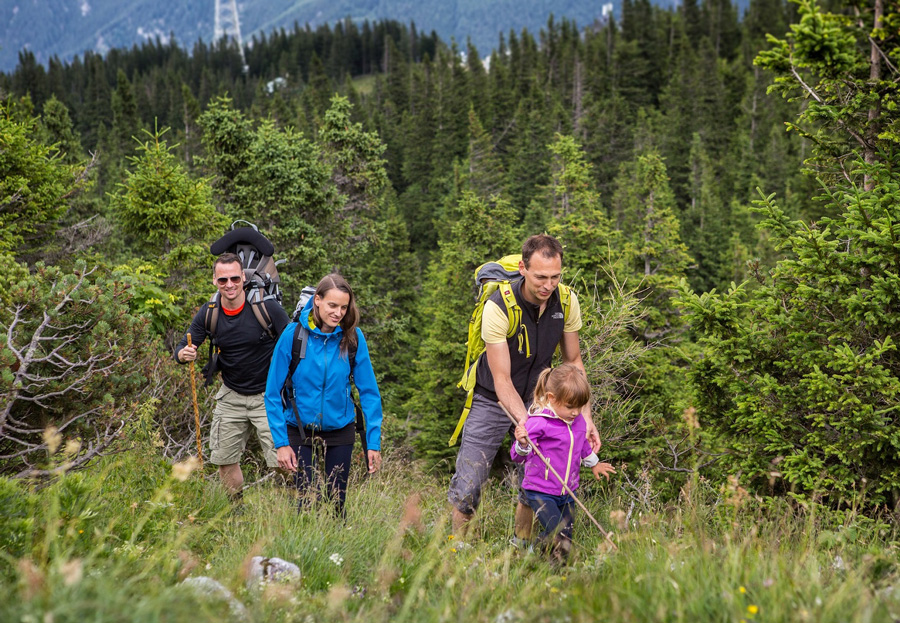Sommerliches Bergvergnügen Mit Seilbahn auf die Rax