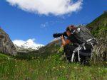 Junge Kreativtalente auf den Spuren heimischer Nationalparks