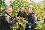 Rossatz: Ertragreiche Ernte bei der Charity-Weinlese