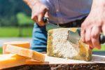 Transgourmet Vonatur: Feinste Käsesorten mit Geschichte