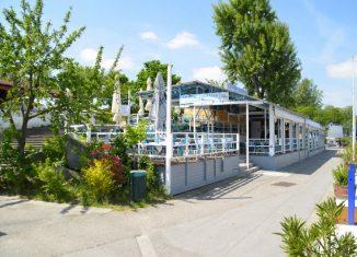 Donauinsel Kulinarik Sport Kultur