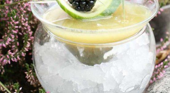 Grasgruen Cocktail Trends App