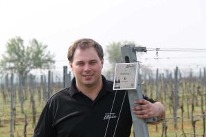 Pannonischer Wein Allacher Michael Allacher