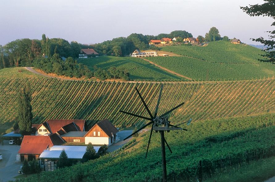 Lagenweine südliche Steiermark Polz
