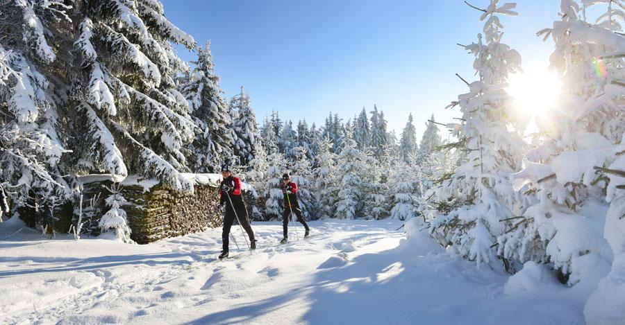 Nordischer Winterurlaub Böhmerwald OÖ langlaufen