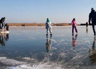 Größter Natureislaufplatz Mitteleuropas Neusiedler See