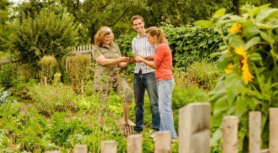 Ausflüge in Niederösterreichs Gärten Gartensommer