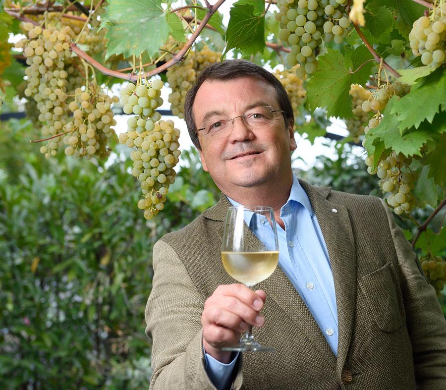 Neue Geschäftsführung für Weinmarketing ab 2020
