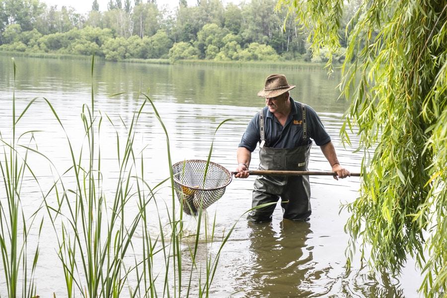 Fische aus der Heimat Naturnahe, tiergerechte und biologische Aufzucht sind garantiert