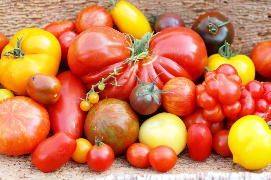Tomate oder Paradeiser?